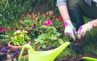 Top Tips for Reducing Aches, Pains and Injuries While Gardening this Spring